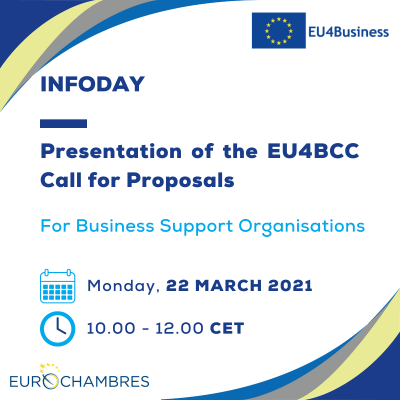Presentation of the Call for Proposals 22_03_2021 (1)